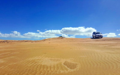 Tour di gruppo – Sud del Marocco da Marrakech al deserto di Erg Chebbi