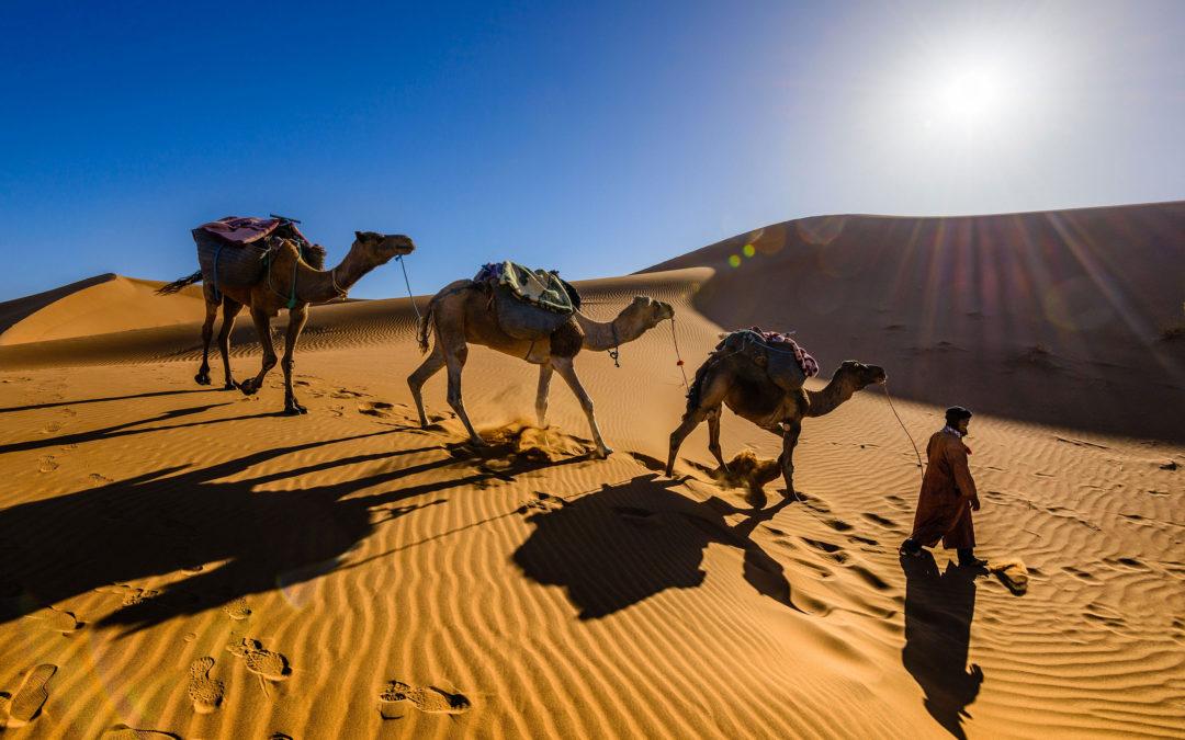 Da Fes al Deserto di Erg Chebbi