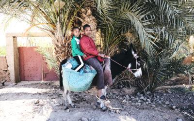 Tour fotografico del Marocco